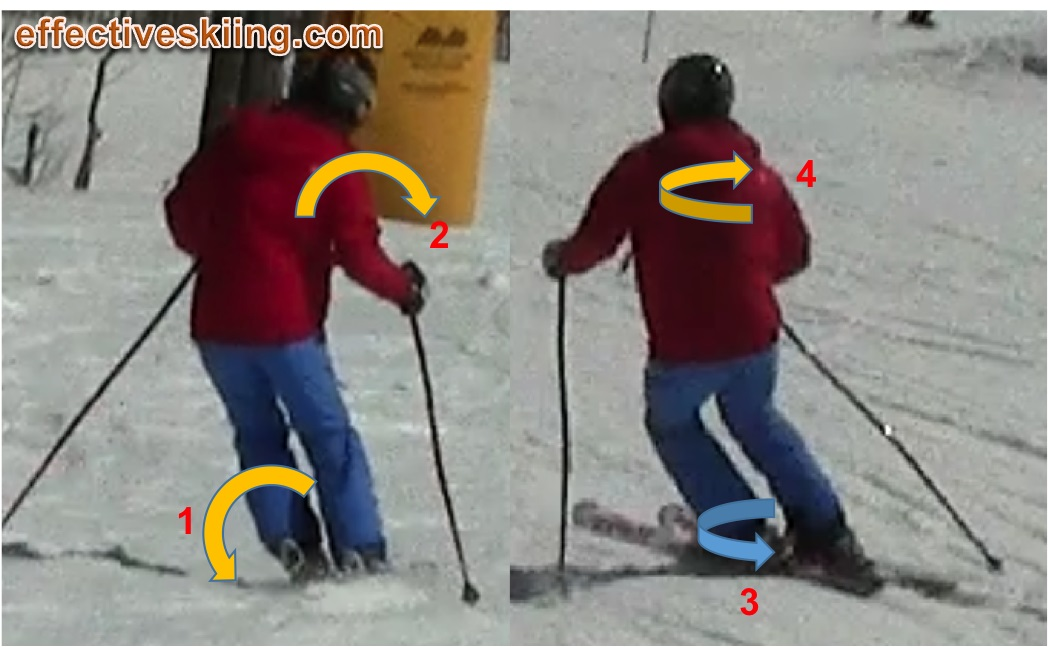 The fundamental movements of skiing